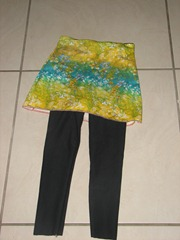 2011-04-24 sewing 006