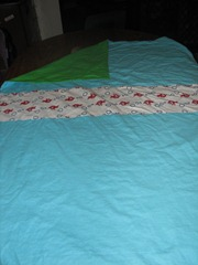 2011-04-24 sewing 007