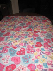 2011-04-24 sewing 008