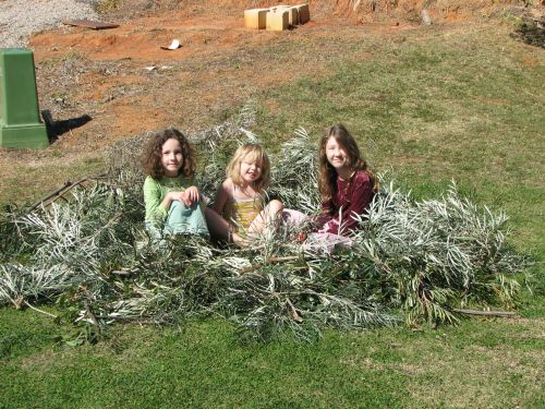 Kids' Giant Bird Nest