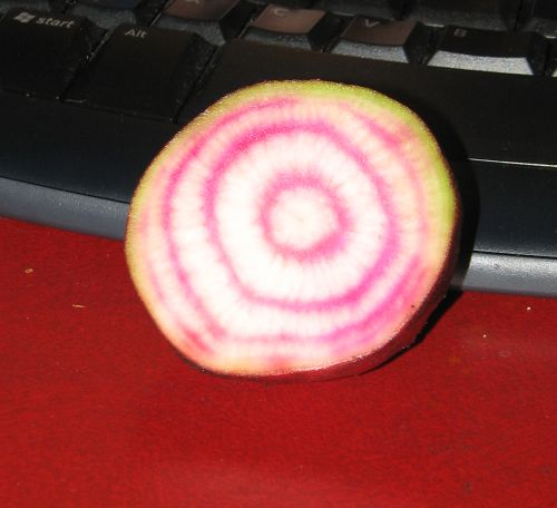 Candy Striped Beetroot