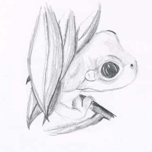 frog_hide_and_seek_2-318